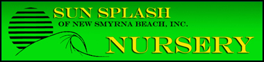Sun Splash Nursery of New Smyrna Beach