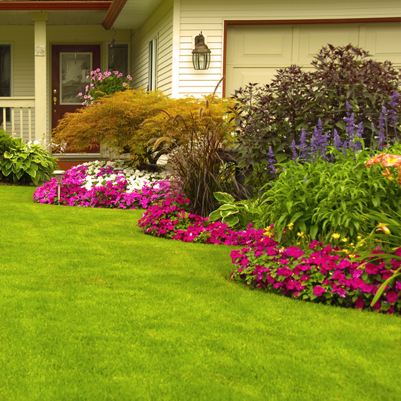 Landscaping Services in New Smyrna Beach, FL